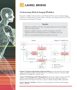 Diagram: Imaging Workflow Overview